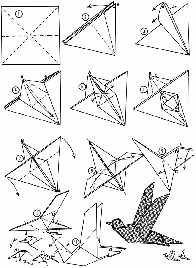 Origami Bird instructions for Kids - How to make a Paper Bird easy step by  step - YouTube | 888x650